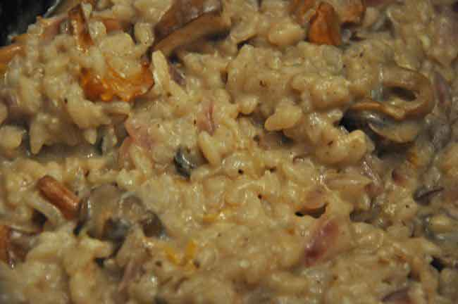 Pilz – Risotto