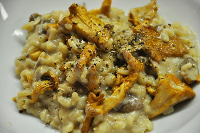 Pfifferling – Risotto